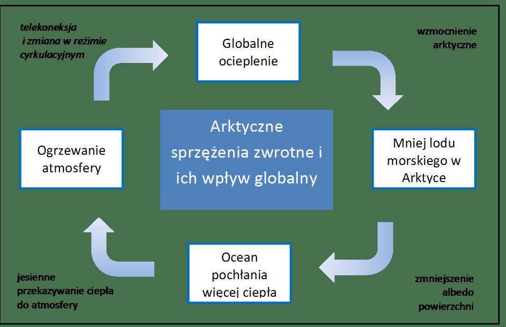 Pętla współczesnych sprzężeń zwrotnych w Arktyce (Overland i in. 2011)